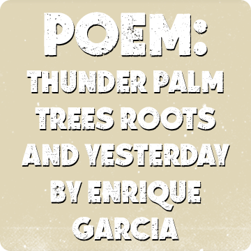 Thunder Palm Trees Roots and Yesterday by Enrique Garcia