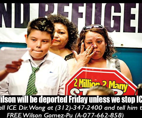 Stop Wilson's Deportation!